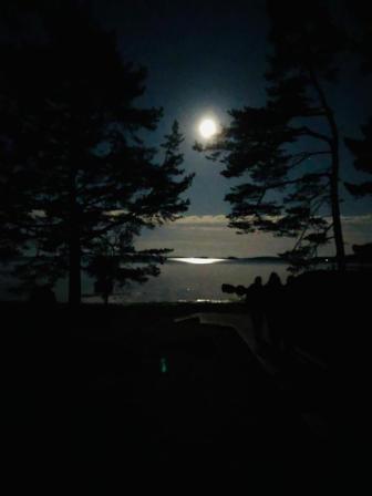 moonnight